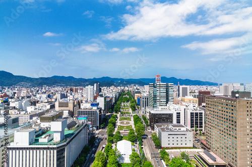 Naklejka premium Hokkaido Sapporo Odori Park Outlook