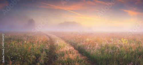 Obraz Bright sunrise on autumn meadow - fototapety do salonu
