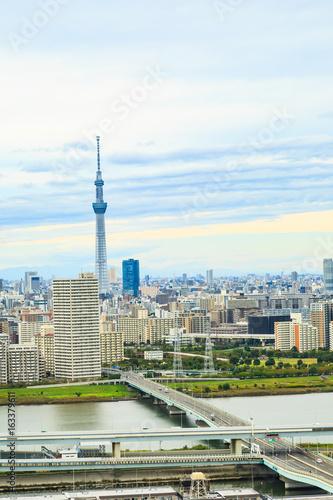Fotomural Tokyo Skytree and Tokyo city