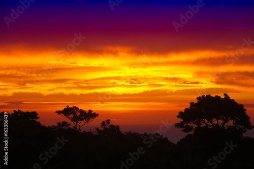 Obrazy na płótnie Canvas Sunset likes fire