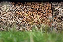 Drewno Opalowe.Drewno Opałowe Poukładane W Komórce Do Przechowywania Drewna.