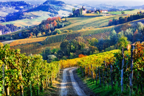 Fotobehang Landschap Vineyards and castles of Piemonte in autumn colors. North of Italy