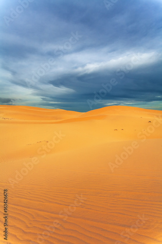 Foto op Aluminium Koraal Sands of the desert in the evening