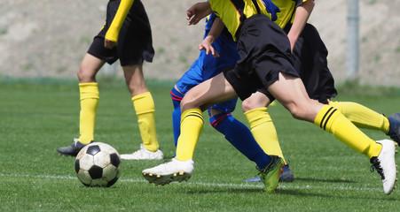 Fototapeta na wymiar サッカー フットボール