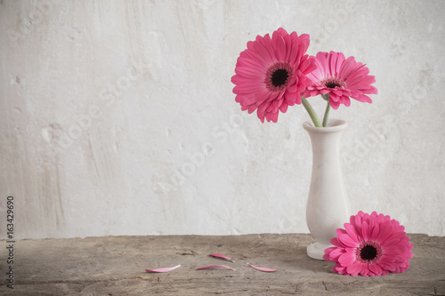 pink gerbera on background old wall Tableau sur Toile