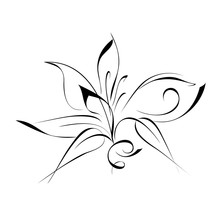 Ornament 53. Stylized Flower I...