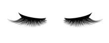 Eyelash Extension. A Beautiful...