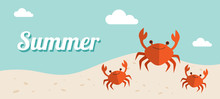 Summer Holiday Banner Vector I...