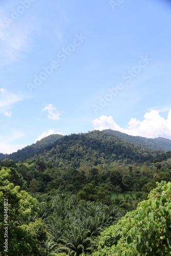 Foto  Naturwald Mountain View-Punkt im Feiertag Asien tropisches Land