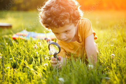 Fotografie, Tablou  Young boy looking at flower through magnifier