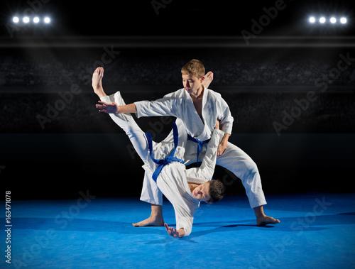 Garden Poster Martial arts Boys martial arts fighters