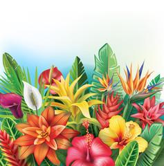 Naklejka Egzotyczne Background from tropical flowers