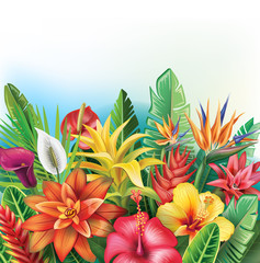 Panel Szklany Egzotyczne Background from tropical flowers