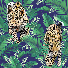 Fototapeta Pantera cheetah and leopards palm leaves tropical watercolor in the jungle seamless background