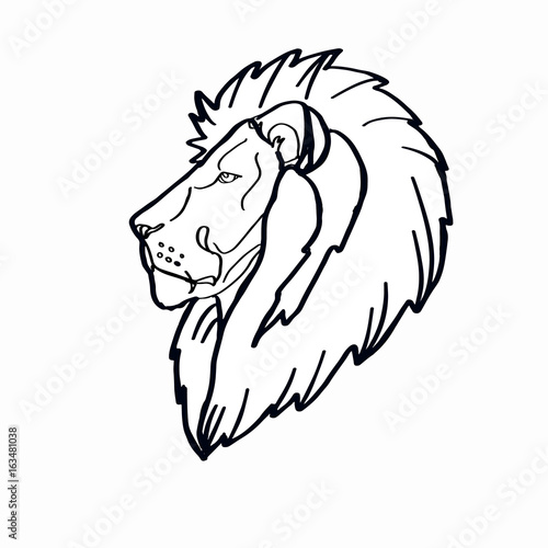 Fototapety, obrazy: Lion head coloring