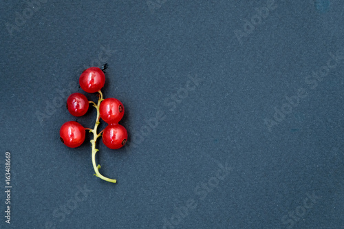 Red ripe currants on a dark background. Droplets of water.