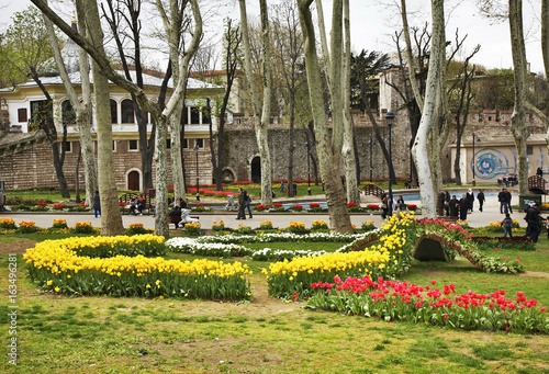 Photo  Gulhane Park in Istanbul. Turkey