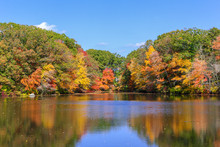 Fall Color Has Arrived In New ...