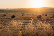 Sunrise Over Harvest Hay Field