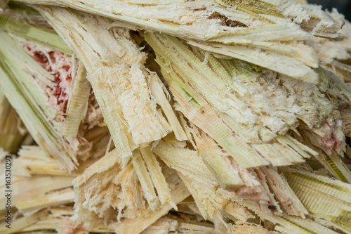 bagasse of sugarcane - selective focus Canvas Print
