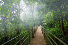 Skywalk Cloudforest Costa Rica