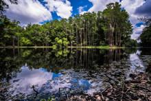 Shingle Creek Regional Park, Orlando Florida
