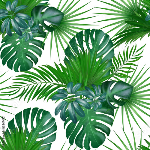 Fototapeta Seamless hand drawn realistic botanical exotic vector pattern with green palm leaves isolated on white background. obraz na płótnie