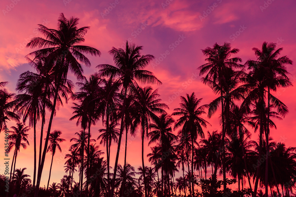 Fototapety, obrazy: Silhouette of coconut trees against dramatic red sunset sky background.