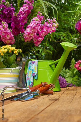 Fototapety, obrazy: Gardening tools and flowers  on the terrace in the garden