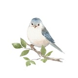 Bird on branch. Watercolor painting - 163559213