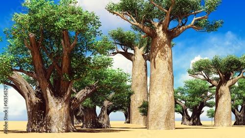 Leinwand Poster Awesome baobabs in African savannah 3d rendering