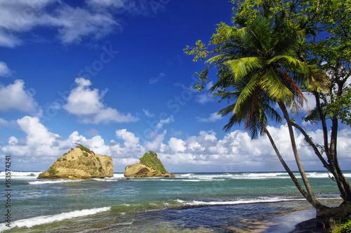 Foto op Plexiglas Landschappen Two rocky little islands near Calibishie village on Dominica island, Lesser Antilles
