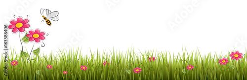 Świeża realistyczna zielona trawa z czerwonymi kwiatami - wektorowa ilustracja