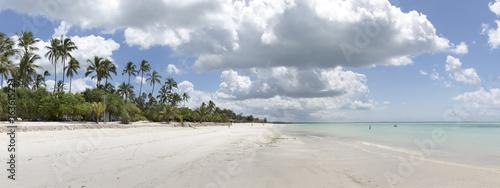 Foto op Aluminium Oceanië Dream beach in zanzibar