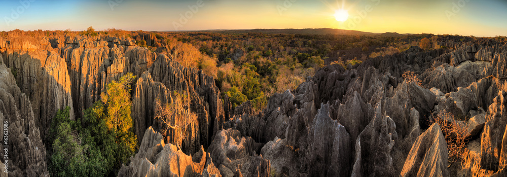 Fototapety, obrazy: Beautiful 180 degree HDR panorama of the unique geography at the Tsingy de Bemaraha Strict Nature Reserve in Madagascar