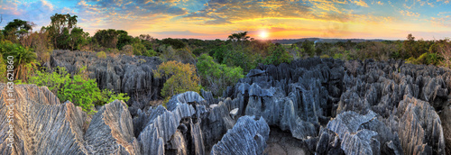 Foto auf Gartenposter Landschaft Beautiful 180 degree HDR panorama of the unique geography at the Tsingy de Bemaraha Strict Nature Reserve in Madagascar