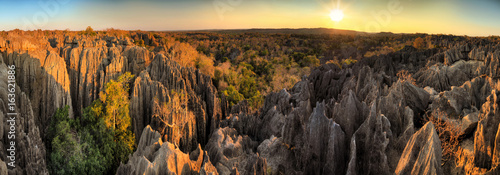 Spoed Fotobehang Afrika Beautiful 180 degree HDR panorama of the unique geography at the Tsingy de Bemaraha Strict Nature Reserve in Madagascar