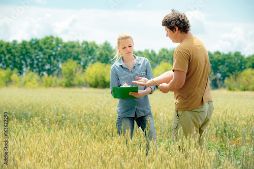 Two agronomist meets at the rye field and take down some notes Canvas Print
