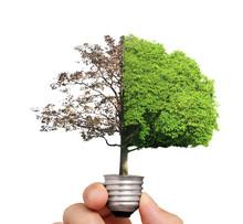 Ideas, Energy Light Bulb