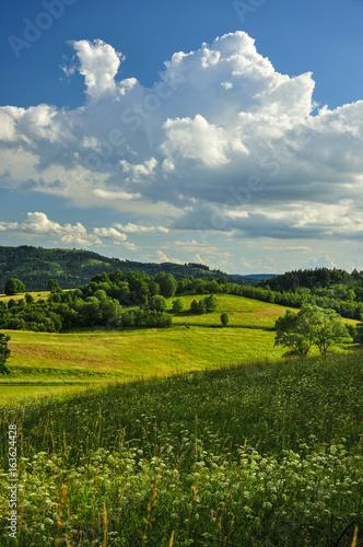 Foto op Aluminium Heuvel Letni krajobraz z chmurą