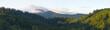 Morgenstimmung im Schwarzwald
