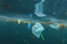 Plastic Straws, Carrier Bags A...