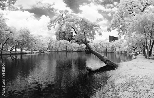Fotografering  Infrared photography (Black and white), Vachirabenjatas Park, land mark of Bangkok, Thailand