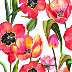 Fototapeta Do jadalni Wildflower tulip flower pattern in a watercolor style. Full name of the plant: tulip. Aquarelle wild flower for background, texture, wrapper pattern, frame or border.