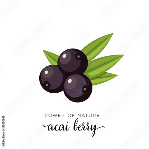 Black acai berry flat icon with inscription colorful vector illustration of eco food isolated on white Wallpaper Mural
