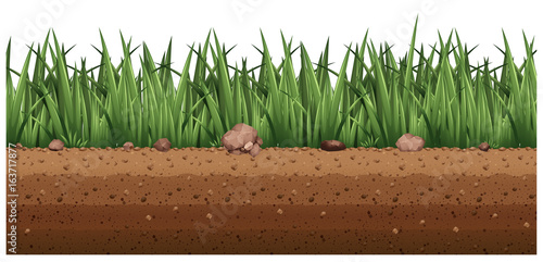 Seamless background with grass on the ground Fototapeta
