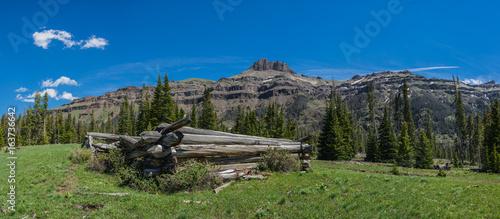 Fotografia, Obraz  Log Cabin in Western Wilderness