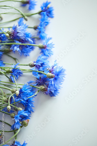 Photo Stands Floral woman Blue flowers of cornflowers