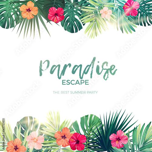 Zielone lato tropikalny tło z egzotycznych liści palmowych i kwiatów hibiskusa. Kwiatowy tło wektor