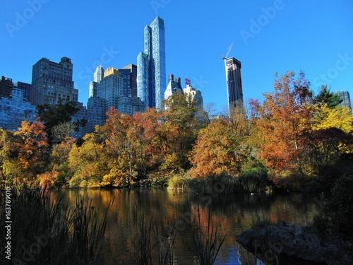 Obraz na dibondzie (fotoboard) park centralny rano